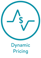 Blue Title DynamicPricing2